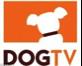 Dog Kennels Boarding - DogTV